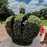 Фестиваль «Императорские сады России» в Михайловском саду