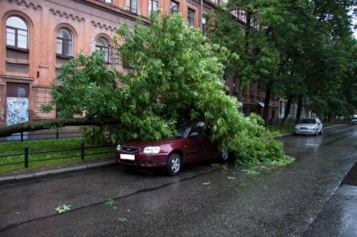 ураган в санкт-петербурге