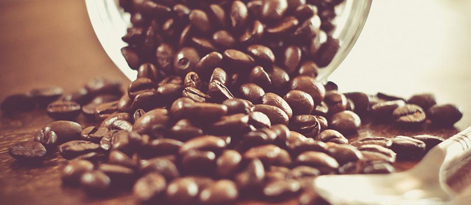 Всемирный день кофе и чая в музее уличного искусства