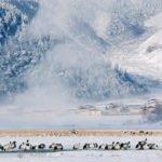 Выставка «Живая природа Китая» в РОСФОТО