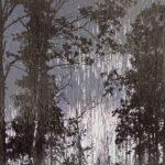 """Фотовыставка Мэттью Брандта """"Таинственный лес"""""""